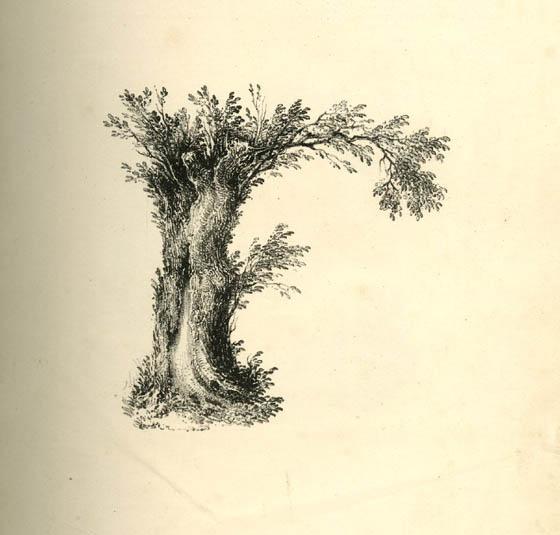 عکس حرف f انگلیسی نقاشی