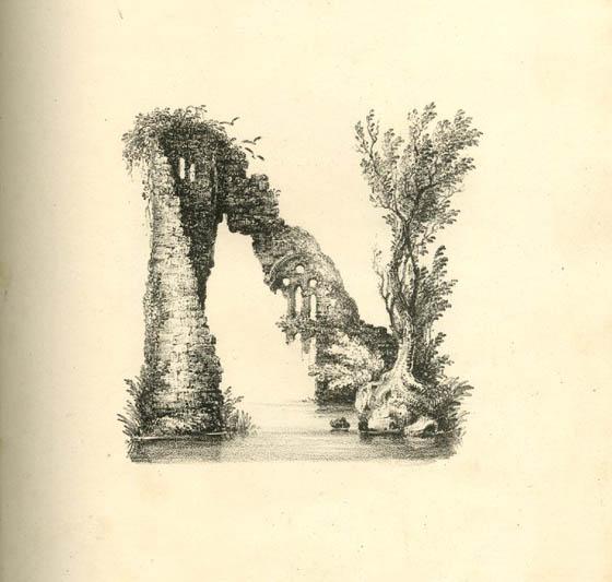 عکس حرف n انگلیسی نقاشی