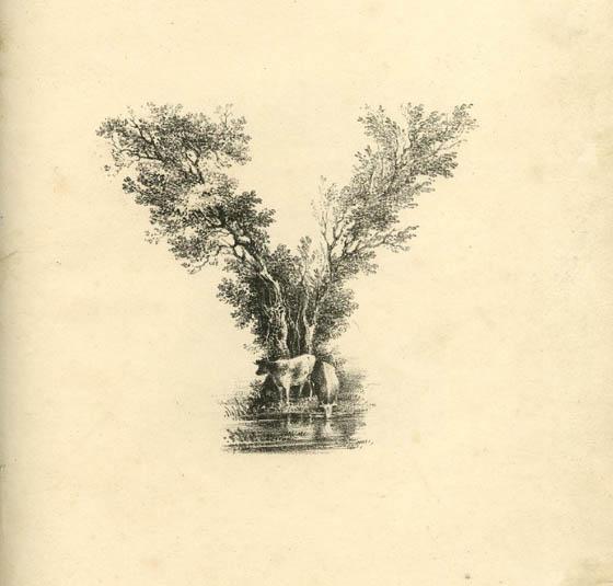 عکس حرف y انگلیسی نقاشی
